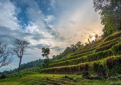 Wat Phou Castle