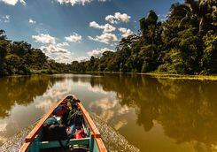 Canoeing down the Napo River