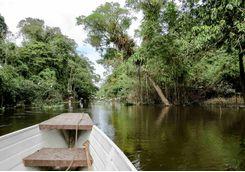 Canoeing in the Amazon