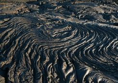 Black lava field in the Galapagos