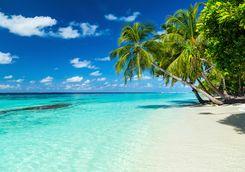 White sand beach in the Maldives