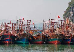 bai tu long boats
