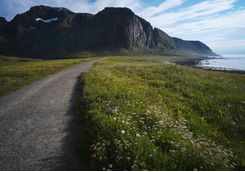 Cycle path in the Lofoten Islands