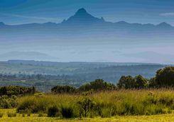 Mount Kenya view