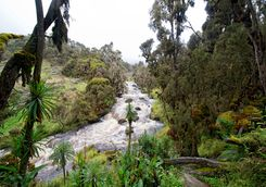 River in Queen Elizabeth National Park