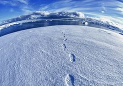 walking to the south pole