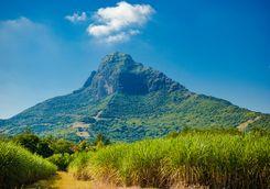 Cesela Nature Park