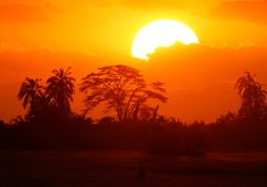 Sunset in Kenya