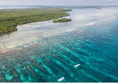 Belize reef aerial