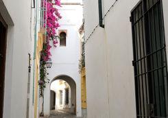 street jewish quarter