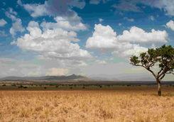 Kidepo landscape