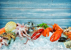 Fresh seafood on ice