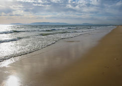 beach comporta