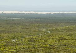 Desert dunes Hoop reserve