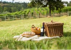 Picnic winelands