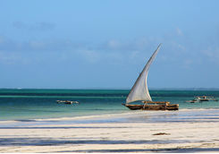 dhow on the beach
