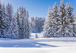 Landscape Megeve