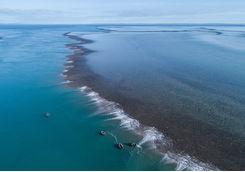 Montgomery reef low tide