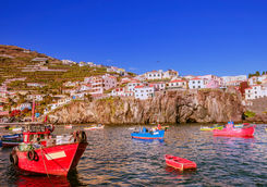 Bay of Camara de Lobos