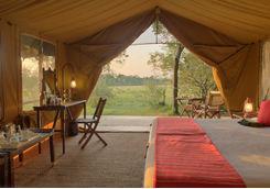 Elephant Pepper Camp tent interior