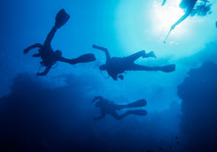Scuba divers at a reef