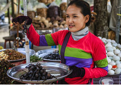 Cambodian woman selling deep fried insects and tarantulas
