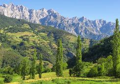 Picos de Europa landscape