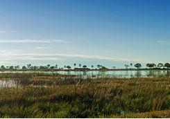 Selinda Reserve landscape