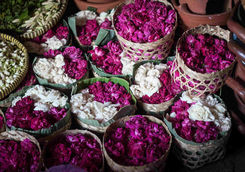 flower sell in wooden box for festival