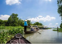 Rowing boats in the Mekong Delta