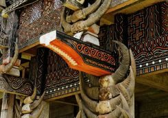 traditional facade house with horns of buffaloes