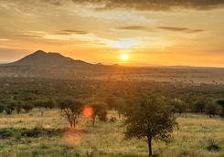 Sunrise in Serengeti National Park