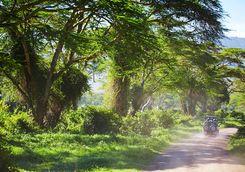 Arusha drive