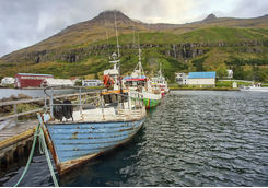 Fishing boats in Seydisfjorour harbour