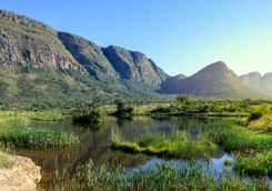 View of swamp with hippos and a mountain range
