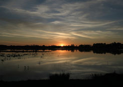 Sunset in Donana