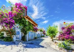 Floral Street in Bodrum