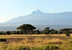 Mount Kenya and savannah