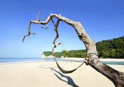 Beach at Sumba Island