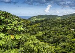 Aerial View of Etang National Park