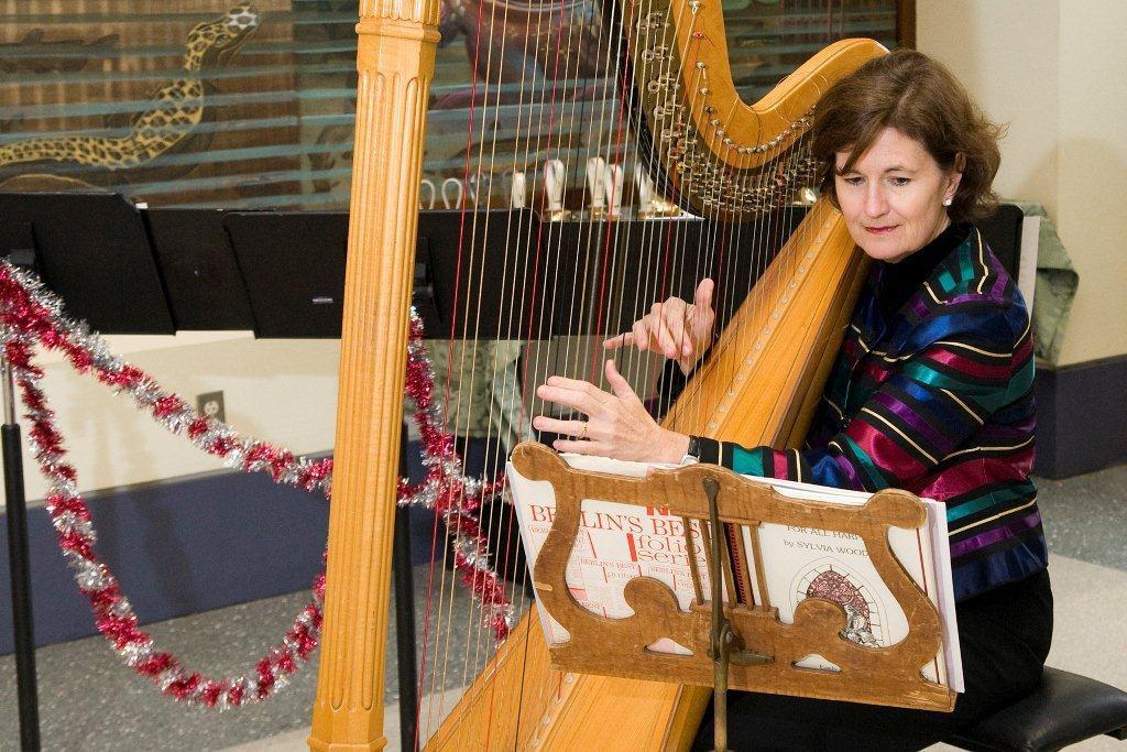 Harpist