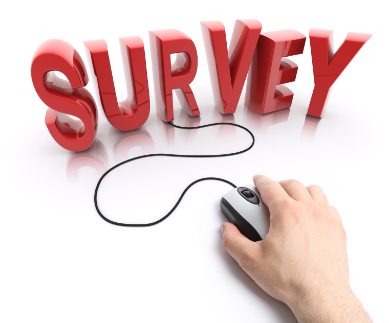 skip-surveys-online