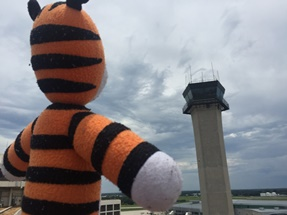 Hobbes and the FAA Tower