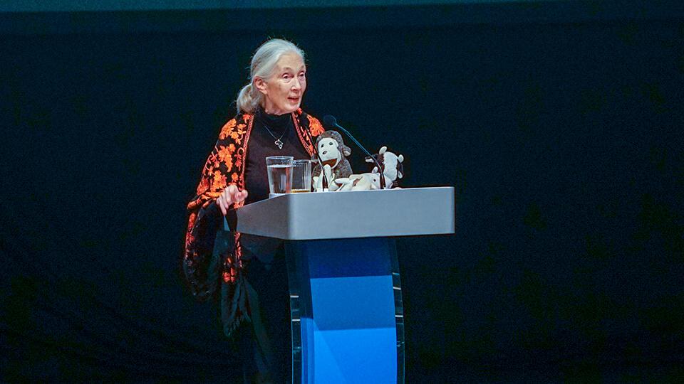 Dr Jane Goodall - 2.jpg