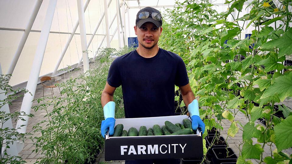 farmcity-2.jpg