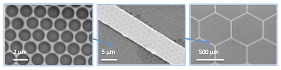 Paul Leu flexible metals nanometer scale