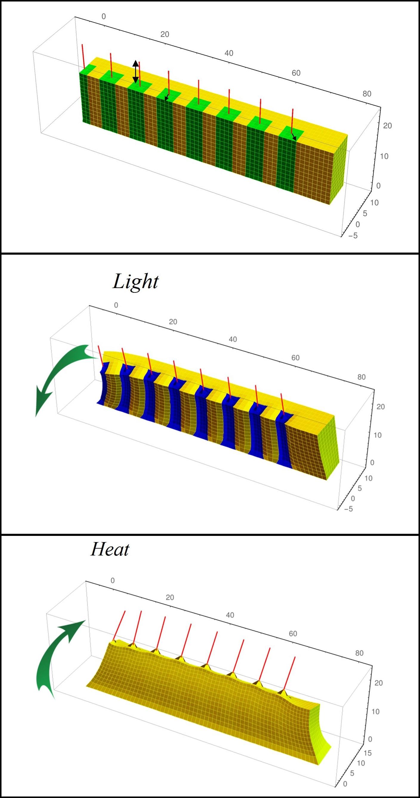 Balazs Kuksenok 4D Composite vertical