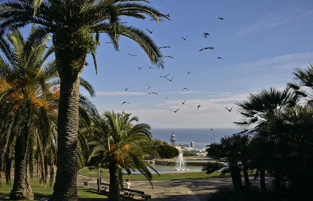 Parc Montjuïc fotografie