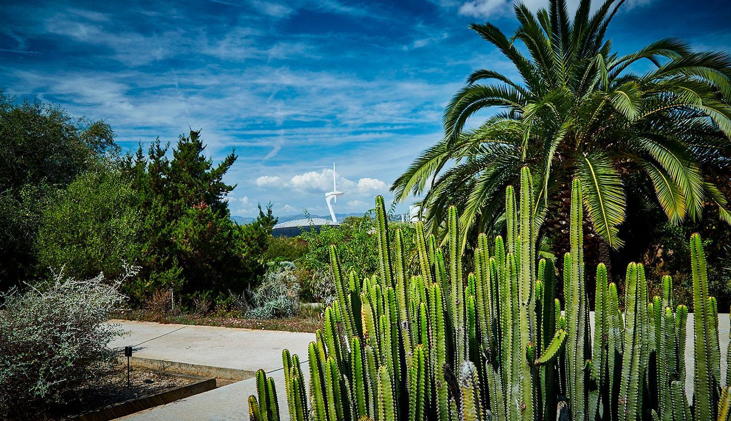 Foto Giardino Botanico