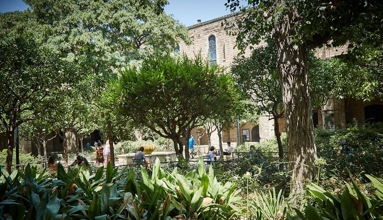 Foto Hospital de la Santa Creu